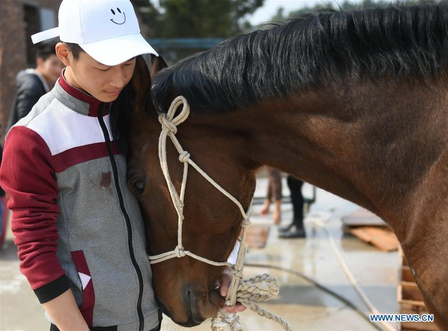 Huang Wanpeng, a student of Sunshine Riding School, caresses an injured horse in Yihuang County of Fuzhou, east China\'s Jiangxi Province, March 14, 2018. Equestrianism had never been heard of in Yihuang, an agricultural county in east China\'s Jiangxi Province, until Sunshine Riding School began recruiting rural teenagers in 2015. So far, most of the 90 students are working or aspiring to work in horse riding clubs in China\'s largest cities such as Beijing, Shanghai and Hangzhou. (Xinhua/Zhou Mi)