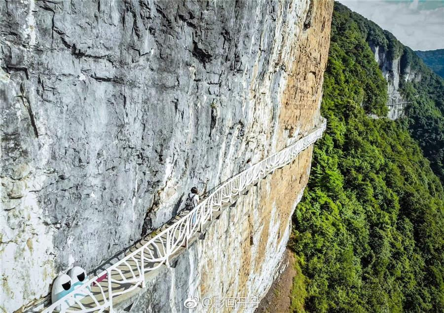A walkway crosses a vertical cliff at Jinfo Mountain in Chongqing municipality. (Photo provided to chinadaily.com.cn)