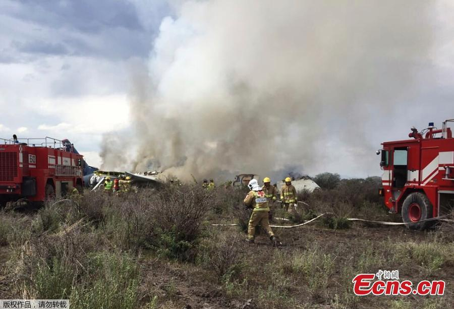 Photo taken with a mobile phone and provided by Durango\'s Civil Protection Department shows rescuers working on the site where a plane crashed in Durango, Mexico, on July 31, 2018. An Aeromexico plane crashed in the northern Mexican state of Durango, local media reported on Tuesday. (Photo/Agencies)