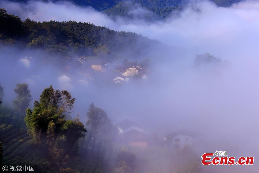 A sea of clouds surrounds Jinlongshan ancient village in Xiuning County, Huangshan City, East China's Anhui Province, after rain on July 31, 2018. (Photo/VCG)