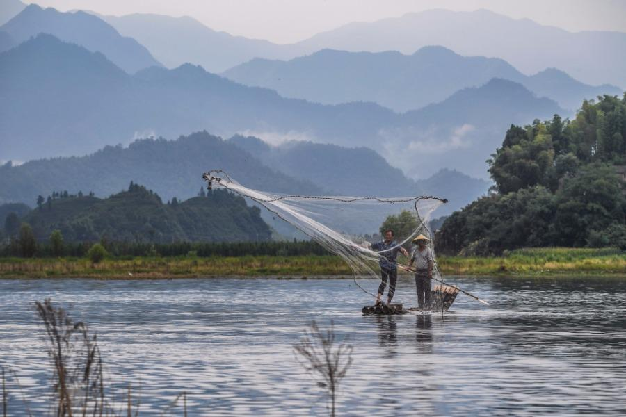 Fishermen cast nets on a bamboo raft on Qiandao Lake, Hangzhou city, Zhejiang Province, Aug. 2, 2018. After a three-month break, fishermen resume a new round of catches in the area, where rural tourism and recreational fishing are highlights of the local industry. (Photo/Xinhua)