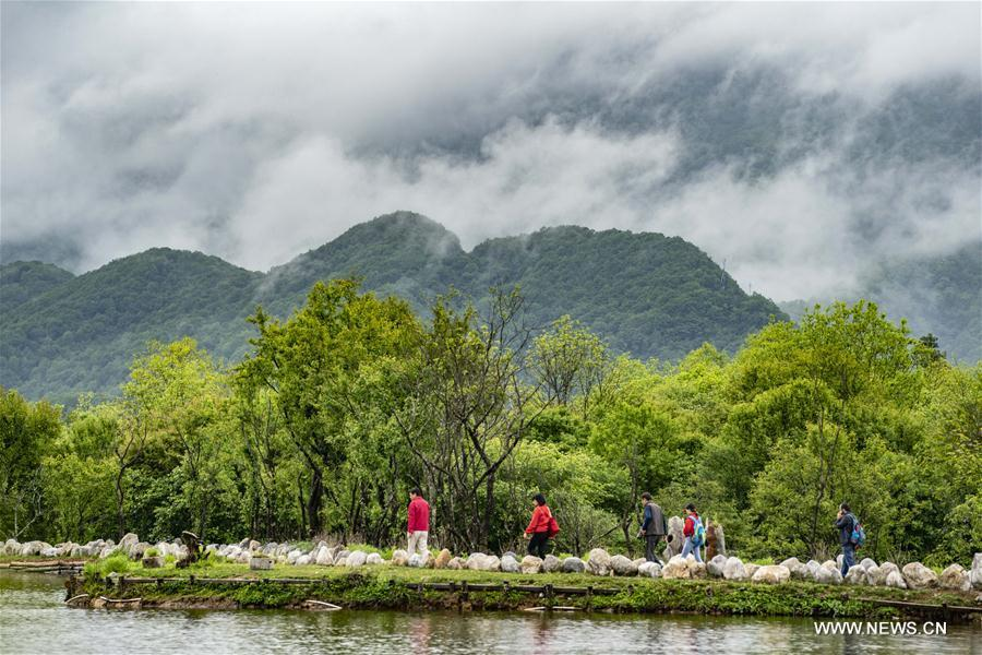 Tourists visit the Dajiuhu wetland in Shennongjia, central China\'s Hubei Province, May 18, 2018. (Xinhua/Du Huaju)
