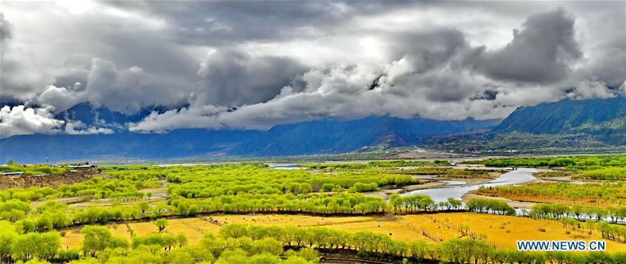 Photo taken on April 27, 2018 shows the scenery of Yani national wetland park in Nyingchi, southwest China\'s Tibet Autonomous Region. (Xinhua/Zhang Rufeng)