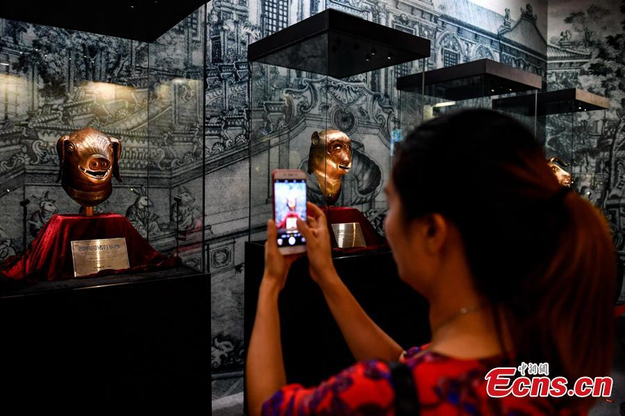 A visitor takes photos at an exhibition displaying four original relics looted from Beijing\'s Old Summer Palace in 1860s underway in Zhaoqing City, Guangdong Province, Aug. 8, 2018. The four works are animal heads symbolizing the 12 animal signs of the Chinese zodiac, including pig, ox, monkey and tiger, which were originally water outlets, part of the fountain in the Old Summer Palace. Poly became a household name by acquiring the four animal heads from foreign auction houses, the centerpiece in Poly Art Museum in Beijing. (Photo: China News Service/Zhao Jimin)