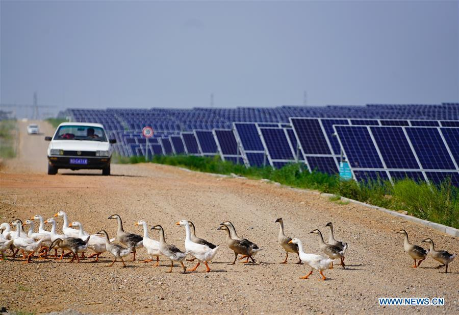 Photo taken on Aug. 1, 2018 shows the solar power farm built at the Kubuqi Desert in north China\'s Inner Mongolia Autonomous Region. Kubuqi, the seventh largest desert in China, is a good example of China\'s success in alleviating desertification. About 6,460 square kilometers of the Kubuqi desert has been reclaimed in the last 30 years. (Xinhua/Xing Guangli)