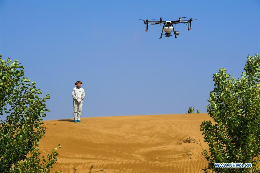 A technician controls a drone to sow seeds at the Kubuqi Desert, north China\'s Inner Mongolia Autonomous Region, July 11, 2018. Kubuqi, the seventh largest desert in China, is a good example of China\'s success in alleviating desertification. About 6,460 square kilometers of the Kubuqi desert has been reclaimed in the last 30 years. (Xinhua/Peng Yuan)
