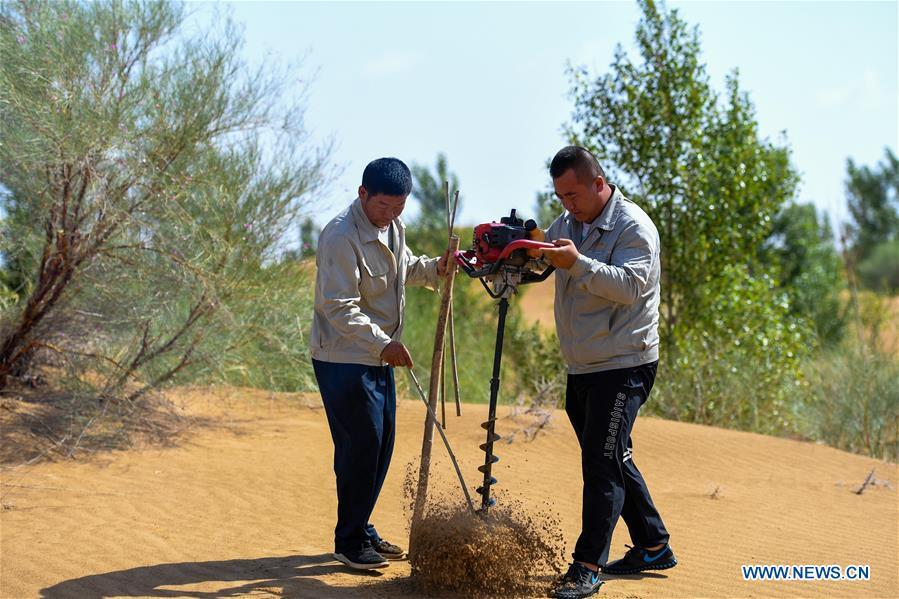 Staff members bore a hole for planting in sandy soil at the Kubuqi Desert in Erdos, north China\'s Inner Mongolia Autonomous Region, July 11, 2018. Kubuqi, the seventh largest desert in China, is a good example of China\'s success in alleviating desertification. About 6,460 square kilometers of the Kubuqi desert has been reclaimed in the last 30 years. (Xinhua/Peng Yuan)