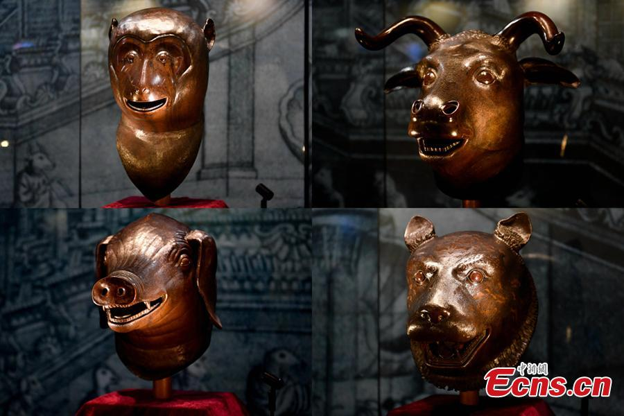 This combo photo shows four bronze animal heads exhibited in Zhaoqing City, Guangdong Provinc, Aug. 8, 2018. The animal heads symbolizing the 12 animal signs of the Chinese zodiac, including pig, ox, monkey and tiger, were originally water outlets, part of the fountain in the Old Summer Palace. Poly became a household name by acquiring the four animal heads from foreign auction houses, the centerpiece in Poly Art Museum in Beijing. (Photo: China News Service/Zhao Jimin)