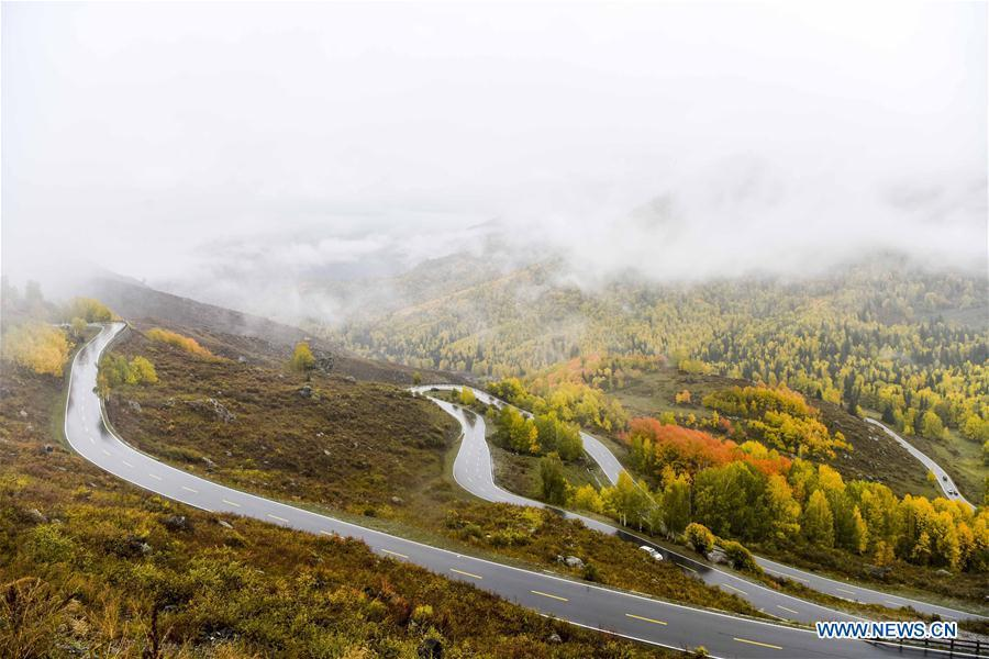 Photo taken on Sept. 23, 2017 shows a car on its way to the Hemu scenic area of Kanas in northwest China\'s Xinjiang Uygur Autonomous Region. As an important link of the Silk Road Economic Belt, Xinjiang is speeding up the development of transportation and logistics to connect east and west. By the end of 2017, the total length of roads in Xinjiang reached 186,000 km, with 4,578 km of expressways. (Xinhua/Zhao Ge)