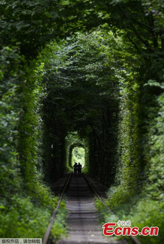 People walk along former railway tracks surrounded by arches of intertwined trees in the so-called \'Tunnel of Love\', near the Ukrainian village of Klevan, Rivno region, Aug. 6, 2018. The tunnel of about five kilometers in length is a botanical phenomenon, which became a cult place for tourists and couples in love. The tourist legend says that wishes of couples in love will come true, if the couple passes through the tunnel. (Photo/Agencies)