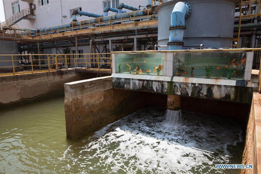 Treated wastewater is seen at Tongling Nonferrous Metals Group Holdings Co., Ltd in Tongling City, east China\'s Anhui Province, Aug. 8, 2018. Tongling government takes measures to improve ecological environment and develop green industry along the Yangtze River. (Xinhua/Jin Liwang)