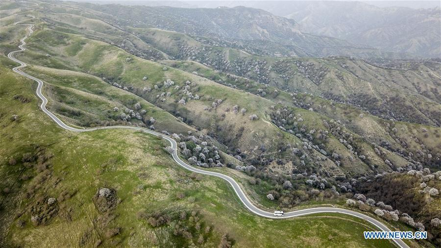Aerial photo taken on April 14, 2018 shows a bus running on a road in Huocheng County, northwest China\'s Xinjiang Uygur Autonomous Region. As an important link of the Silk Road Economic Belt, Xinjiang is speeding up the development of transportation and logistics to connect east and west. By the end of 2017, the total length of roads in Xinjiang reached 186,000 km, with 4,578 km of expressways. (Xinhua/Hu Huhu)