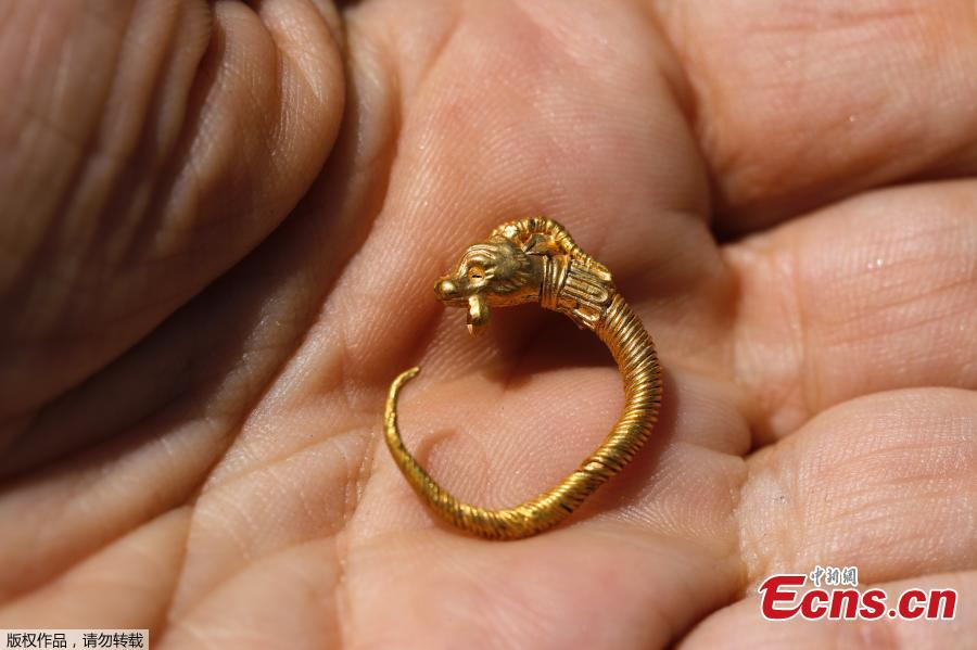 An Israeli archeologist shows a rare golden earring believed to be more than 2,000 years-old, discovered at the archeological site of the City of David in East Jerusalem near the walls of the old city on 8 August 2018. A Hellenistic-era golden earring, featuring ornamentation of an horned animal, was discovered in the Givati Parking Lot in the City of David National Park encircling the Old City walls. The discovery was made during archeological digs carried out by the Antiquities Authority and Tel Aviv University. The spectacular gold earring, shaped like a horned animal, dates back to the second or third century BCE, during the Hellenistic period. (Photo/Agencies)