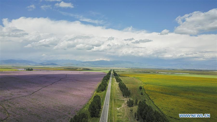 Aerial photo taken on Aug. 2, 2018 shows a road in Zhaosu County, northwest China\'s Xinjiang Uygur Autonomous Region. As an important link of the Silk Road Economic Belt, Xinjiang is speeding up the development of transportation and logistics to connect east and west. By the end of 2017, the total length of roads in Xinjiang reached 186,000 km, with 4,578 km of expressways. (Xinhua/Hu Huhu)