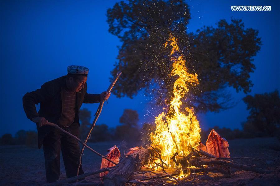 A villager bakes fish in Bachu County, northwest China\'s Xinjiang Uygur Autonomous Region, Nov. 5, 2017. (Xinhua/Jiang Wenyao)