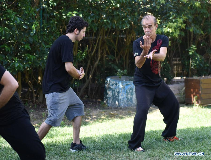 Turkish Tai Chi instructor Esat Atac (R) shows Tai Chi moves to his student in Istanbul, Turkey, on Aug. 9, 2018. Tai Chi has recently become an appealing activity, especially for those who feel stressed out living in big cities like Istanbul, according to Mustafa Karslioglu, deputy head of the Turkish-Chinese Cultural Association. (Xinhua/He Canling)