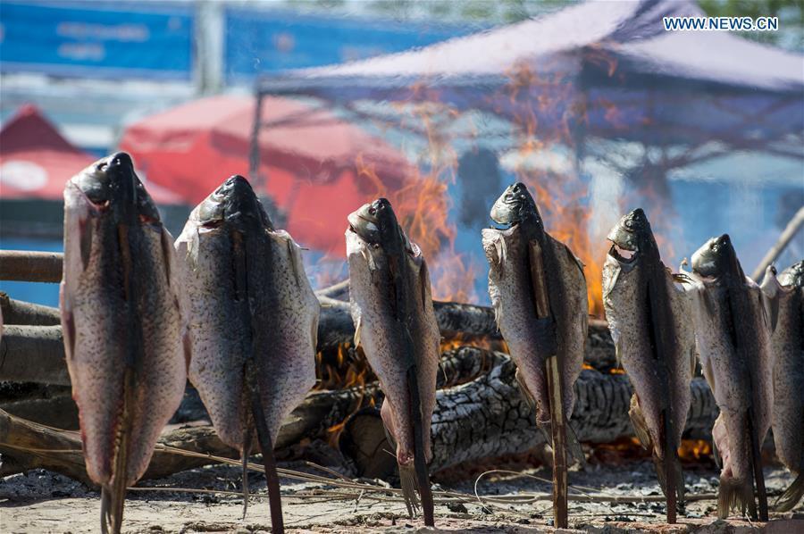 Photo taken on May 22, 2017 shows baked fishes displayed at an international food expo in Urumqi, northwest China\'s Xinjiang Uygur Autonomous Region. (Xinhua/Jiang Wenyao)