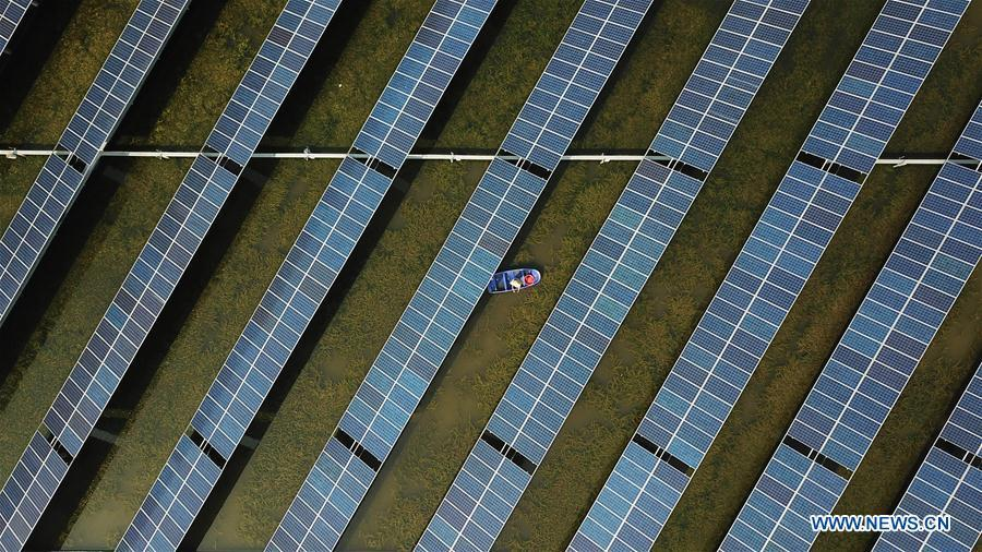 Aerial photo taken on Aug. 9, 2018 shows a villager cleaning the flotage in a fish pond covered by photovoltaic power panel in Yintu Township of Jinhu County, east China\'s Jiangsu Province. (Xinhua/Li Yuze)