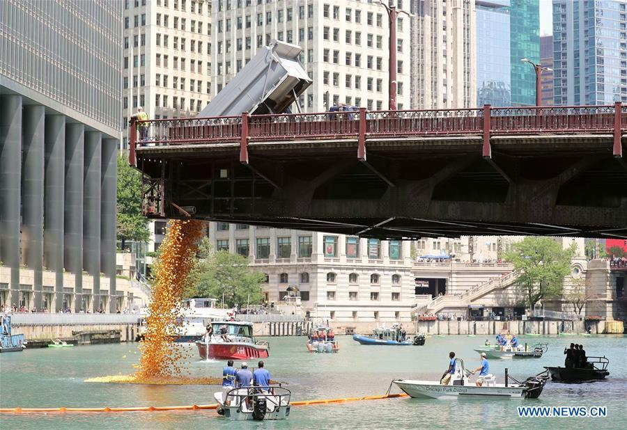 Rubber ducks are dropped into the Chicago River during the 13th Annual Chicago Ducky Derby in Chicago, the United States, Aug. 9, 2018. Derby organizers dropped about 60,000 rubber ducks into the Chicago river on Thursday to start the Rubber Ducky Derby this year, which helps raise money for Special Olympics Illinois. (Xinhua/Wang Ping)