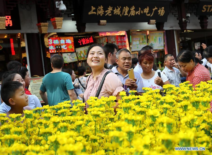 A scene of Luoping cole flower field is seen at the Yunnan folk art exhibition at Yuyuan Garden in east China\'s Shanghai, Aug. 10, 2018. The exhibition kicked off here on Friday and shows folk dances, local artwares and scenery from Qujing City of Yunnan Province. (Xinhua/Liu Ying)