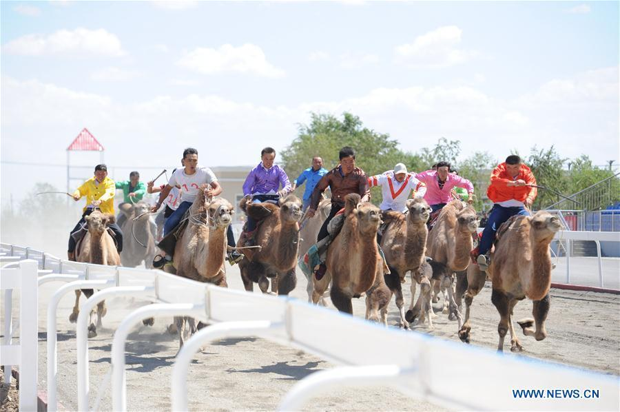 Contestants take part in a camel competition during a folk custom tourism festival held in the Kazak Autonomous County of Mori in northwest China\'s Xinjiang Uygur Autonomous Region, Aug. 11, 2018. The two-day festival opened here on Saturday. (Xinhua/Sadat)