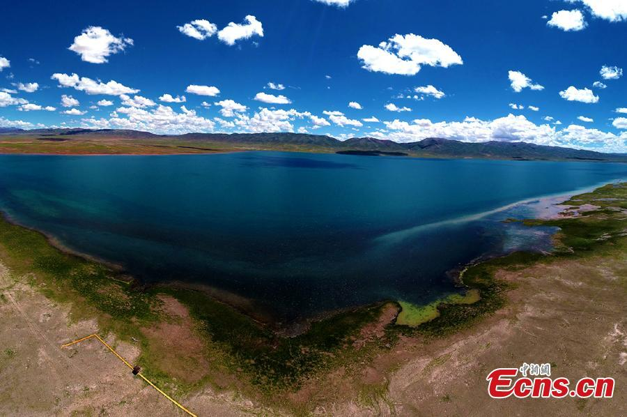 A photo taken by a drone shows a stunning view of Alag Lake in Dulan County, Northwest China's Qinghai Province. The lake, with an average elevation of 4,099 meters, is a major inland lake in the upper reaches of the Qaidam River and also an important habitat for wildlife. The river channels formed by the melting of snow and ice in the mountains creates spectacular scenes.  (Photo: China News Service/Dai Chun)