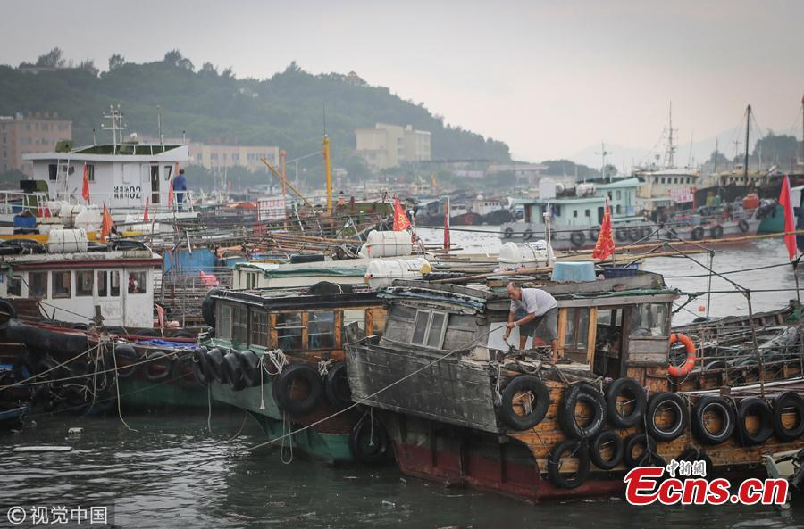 Fishing vessels anchor at a port ahead of Tropical Storm Bebinca in Yangjiang City, South China\'s Guangdong Province, Aug. 14, 2018. Locals fastened the boats to prepare for the strong winds expected with the storm. (Photo/VCG)