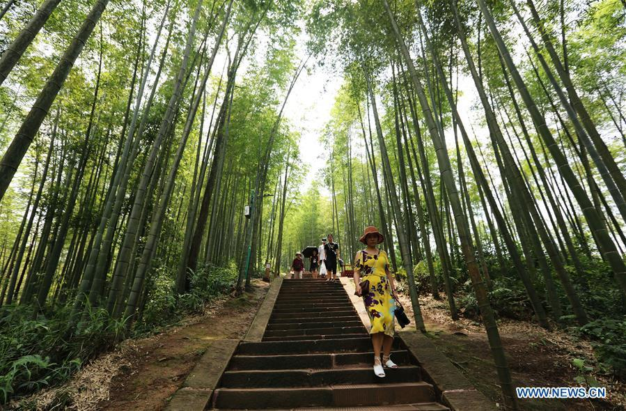 Tourists visit the Zhuhai state forest park in Chishui City, southwest China\'s Guizhou Province, Aug. 13, 2018. (Xinhua/Wang Changyu)