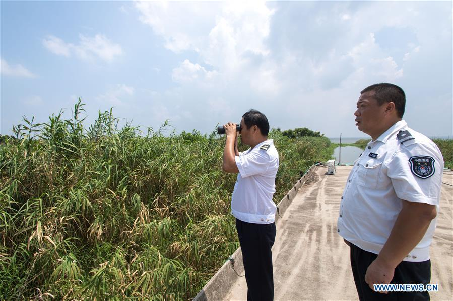 Staff members of the Xiaogang lake-patroller station observe the Honghu Lake in Honghu City, central China\'s Hubei Province, Aug. 15, 2018. Honghu Lake, Hubei Province\'s biggest lake, is \