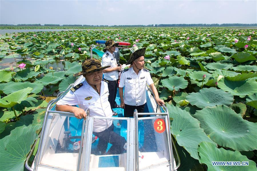 Staff members of the Xiaogang lake-patroller station patrol the Honghu Lake in Honghu City, central China\'s Hubei Province, Aug. 15, 2018. Honghu Lake, Hubei Province\'s biggest lake, is \