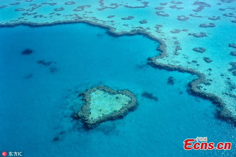 File photo shows a heart-shaped reef in Whitsundays, Australia.  (Photo/IC)
