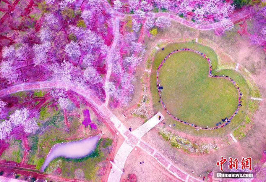 File photo shows a piece of heart-shaped lawn in Nanchang, Jiangxi Province. Take a look at these awesome hearts found in the nature as today is China\'s Qixi Festival, or Chinese Valentine\'s Day. It is always the seventh day of the seventh month on the lunar calendar.  (Photo/IC)