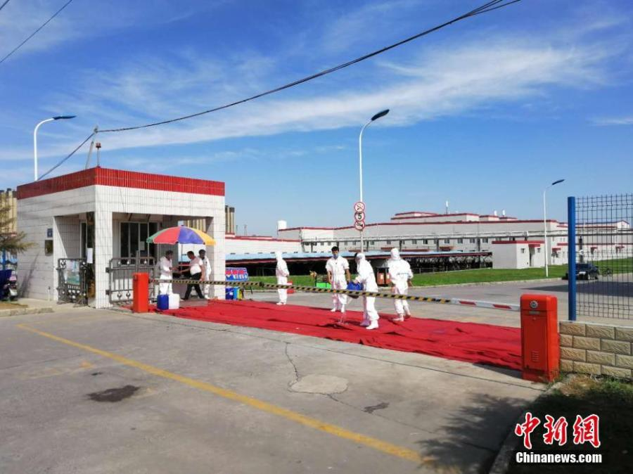 Workers are disinfected at the entrance to a plant of Shuanghui Group, China\'s largest pork producer and processor, in Zhengzhou City, Central China's Henan Province, Aug. 17, 2018. Shuanghui's plant reported an outbreak of African swine fever among 30 of 260 pigs bought from a market in Heilongjiang Province. The slaughterhouse is now closed for six weeks. (Photo: China News Service/Liu Peng)