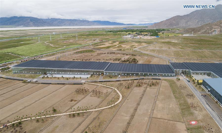 Aerial photo taken on July 23, 2018 shows a nursery base in Zhanang County of Shannan, southwest China\'s Tibet Autonomous Region. Over the past four decades, the Shannan people have made achievements in desert control by building a 1.8-kilometer-wide \