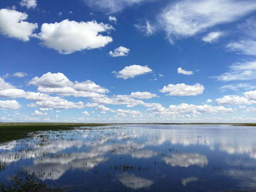 An azure sky and clouds in Hulunbeier, North China\'s Inner Mongolia autonomous region, on Aug 22, 2019.  (Photo provided to chinadaily.com.cn)