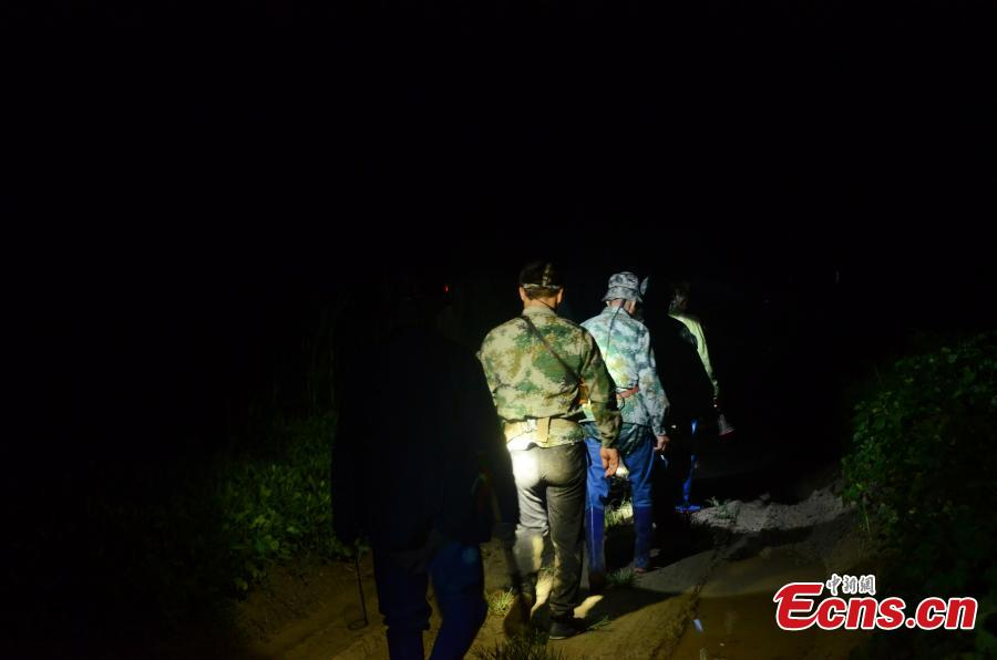 Farmers search for crickets in the field in Sidian Town, Ningyang County, East China's Shandong Province, at around 2:00 am on Aug. 24, 2018. The town has been famous as a source of crickets for tens of years and it's estimated the insect has generated an annual revenue of 700 million yuan ($102 million). Wang Yingxi, who works in other cities for better-paying jobs, often comes back to his hometown to search for crickets during the season. Zhang Maolong, a 58-year-old cricket dealer, said he bought 90 crickets since July 26 and the most expensive one was 3,600 yuan. Liu Deqiang, director of a local cricket association, claimed over 200,000 dealers visited the town in the season and one cricket fetched a record of 100,000 yuan. (Photo: China News Service/Hao Xuejuan)
