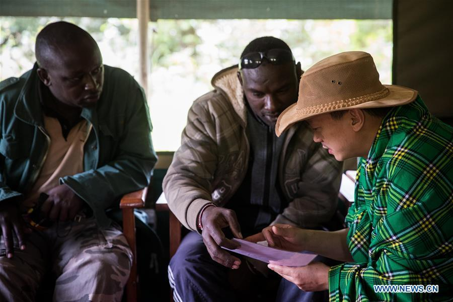 Chinese wildlife conservationist Zhuo Qiang (R) discusses with locals at Ol Kinyei conservancy in Maasai Mara, Kenya, July 8, 2018. The founder and Chairman of Mara Conservation Fund (MCF) Zhuo Qiang, a 45-year-old Chinese, has pioneered outstanding wildlife conservation projects in the world famous Maasai Mara ecosystem. Ol Kinyei is among the conservancies benefiting from his activities. Around it, he has built three lion proof boas preventing the wildlife conflict with the adjacent communities. He was officially adopted as a son of the Maasai\'s Ol Kinyei conservation group in 2015, owing to his unwavering friendship with the pastoralists. Zhuo\'s anti-poaching drives in the East African nation expresses the increasing collaboration between Kenyan and China in ending the killing of rhinos, elephants and lions. (Xinhua/Lyu Shuai)