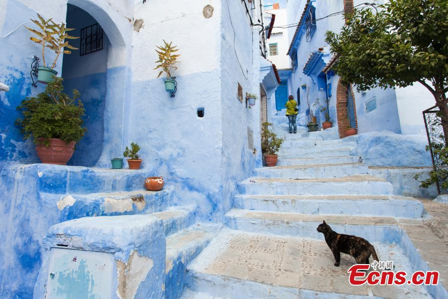 A general view shows a street painted in the tradition blue of the northern Moroccan Rif town of Chefchaouen. (Photo provided to China News Service)