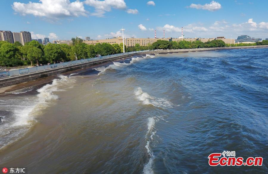 Waves surge in the Qiantang River in Hangzhou City, East China's Zhejiang Province, Aug. 28, 2018.  High tides produced high waves in the Qiantang River on the eighteenth day of the seventh lunar month, on Aug. 28 this year. (Photo/IC)