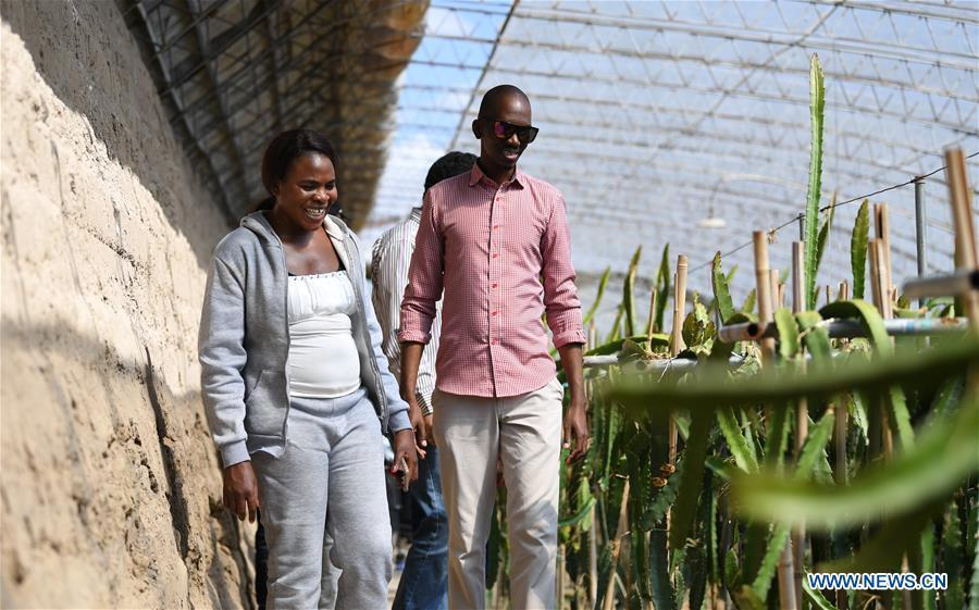 Nakanyala Elina Shekupe (L) and other students visit a greenhouse in Minqin County, northwest China\'s Gansu Province, Aug. 25, 2018. Shekupe, 37, is an agricultural technology official from Namibia. She and 11 other students are taking part in a desertification combating and ecological restoration training course organized by China\'s Ministry of Commerce in Gansu. \