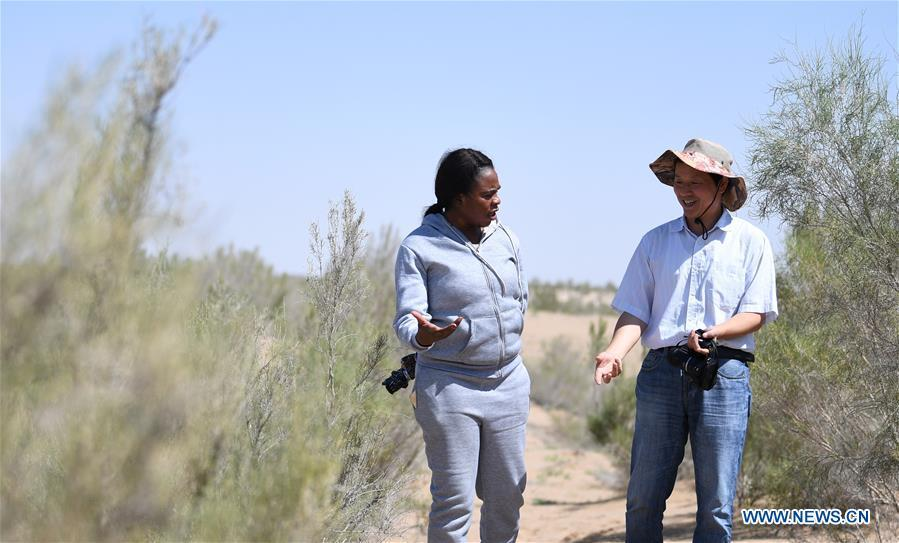 Nakanyala Elina Shekupe (L) and a staff member of Gansu Desert Control Research Institute visit a desertification combating demonstration zone in northwest China\'s Gansu Province, Aug. 25, 2018. Shekupe, 37, is an agricultural technology official from Namibia. She and 11 other students are taking part in a desertification combating and ecological restoration training course organized by China\'s Ministry of Commerce in Gansu. \