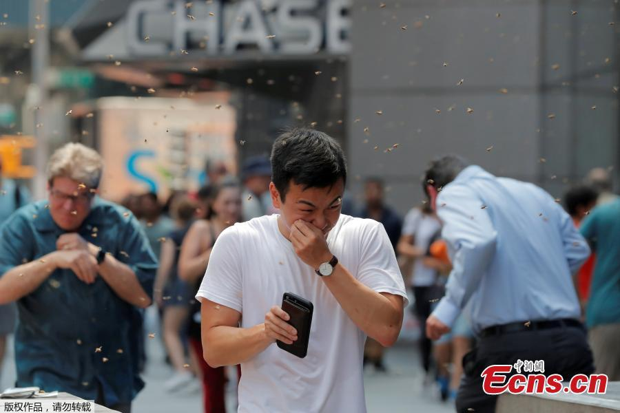 People react to a swarm of bees in Times Square in New York City, U.S., Aug. 28, 2018. The New York Police Department\'s bee keepers unit responded to the scene and safely removed the bees without incident. (Photo/Agencies)