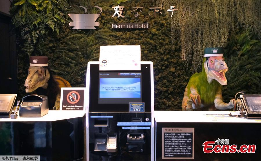 Dinosaur robots act as receptionist in the Henn na Hotel Maihama Tokyo Bay in Urayasu, east of Tokyo, Japan, Aug. 31, 2018. Multilingual dinosaur robot at the front desk will do check-in / check-out procedures as the hotel aims to offer comfortable stay by utilizing various advanced technologies. The name is a play on a Japanese word meaning strange. (Photo/Agencies)