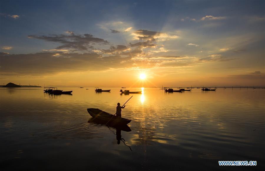 A fisherman rows a boat in Jishan water area of Poyang Lake in Duchang County, east China\'s Jiangxi Province, Aug. 28, 2018. (Xinhua/Fu Jianbin)