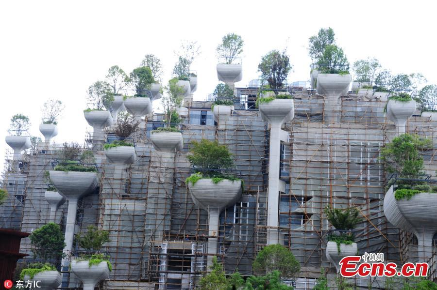 Terraced buildings with landscape features that have been dubbed the \