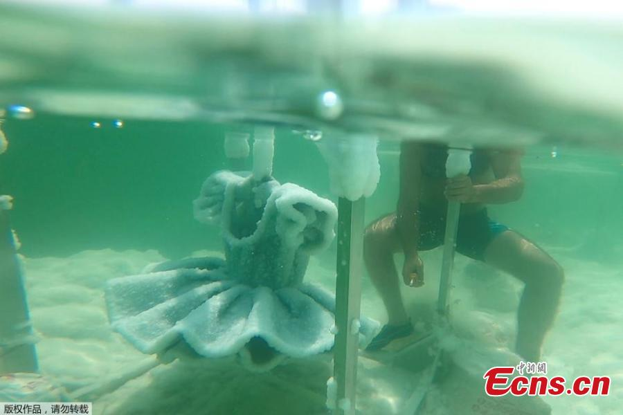A man helps remove one of Israeli artist Sigalit Landau\'s pieces, a ballerina\'s tutu covered in salt crystal formations, from it\'s anchorage at the bottom of the Dead Sea, Israel, Aug. 30, 2018, in this still image taken from a video. (Photo/Agencies)