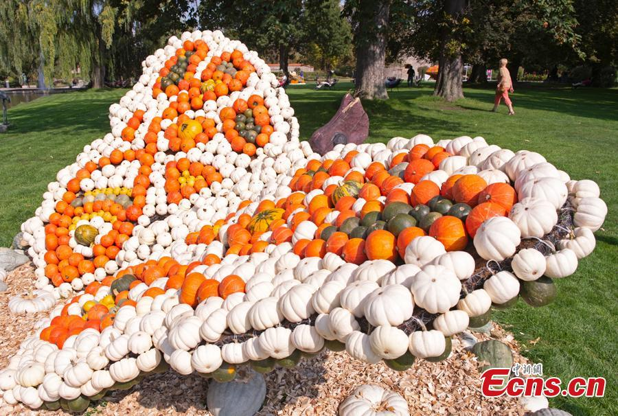 A visitor walks behind a sculpture displaying a butterfly during the autumn exhibition \'Flying\' at the horticultural exhibition \'ega\' (Erfurt Garden Construction Exhibition) in Erfurt, Germany, Wednesday, Sept. 5, 2018. Gardeners created different sculptures with thousands of pumpkins. The exhibition started on Sept. 2, 2018 and last until Oct. 31, 2018. (Photo/Agencies)