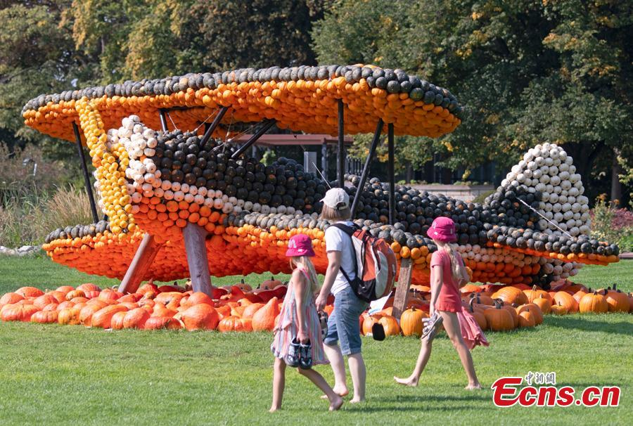 Visitors walk in front of a sculpture displaying a airplane during the autumn exhibition \'Flying\' at the horticultural exhibition \'ega\' (Erfurt Garden Construction Exhibition) in Erfurt, Germany, Wednesday, Sept. 5, 2018. Gardeners created different sculptures with thousands of pumpkins. The exhibition started on Sept. 2, 2018 and last until Oct. 31, 2018.(Photo/Agencies)
