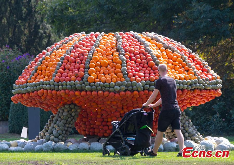 Visitors walk behind a sculpture displaying an UFO object during the autumn exhibition \'Flying\' at the horticultural exhibition \'ega\' (Erfurt Garden Construction Exhibition) in Erfurt, Germany, Wednesday, Sept. 5, 2018. Gardeners created different sculptures with thousands of pumpkins. The exhibition started on Sept. 2, 2018 and last until Oct. 31, 2018.(Photo/Agencies)