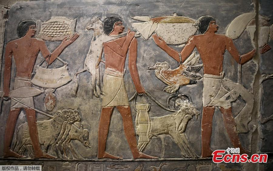 A wall of a chamber of the tomb of Mehu is seen after it was opened for the public at Saqqara area near Egypt\'s Saqqara necropolis, in Giza, Egypt September 8, 2018.(Photo/Agencies)